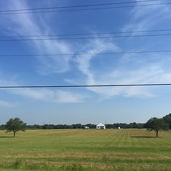 Feel the closeness of Texas, the land is flattening and there's was and less between towns. Also, looks a phoenix in the clouds. On Rt. 90 in Lacassine, LA. #theworldwalk #travel #twwphotos