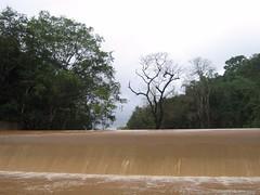 Kollibacchalu Dam -Malenadu Heavy Rain Effects Photography By Chinmaya M.Rao   (81)