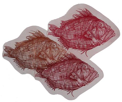 Scorfani, acquaforte, stampa multicolore, 2013