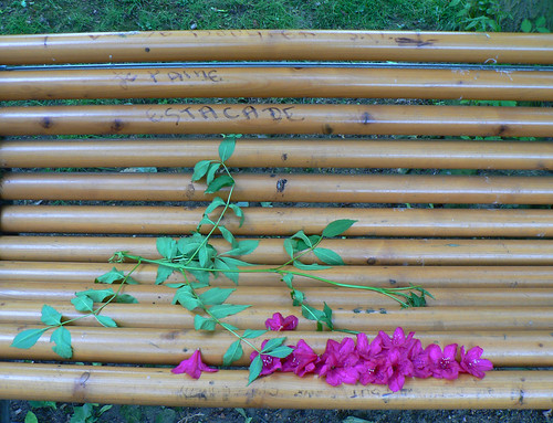Love message on a bench (by Claudecf)