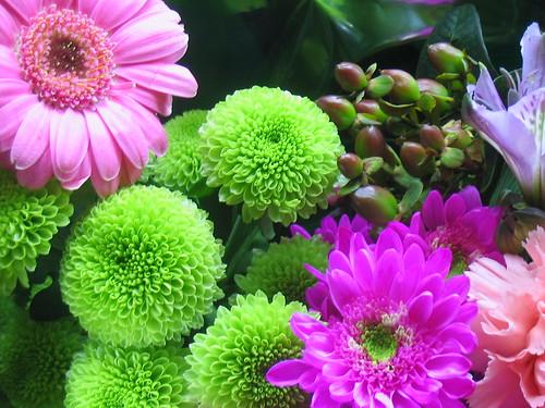 Flowers from Antoine