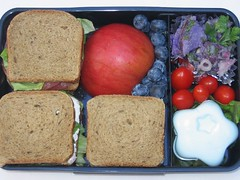 Mini-sandwich lunch for adult