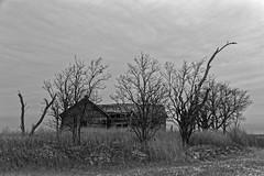 KansasThanksgiving-2534_DxO.jpg