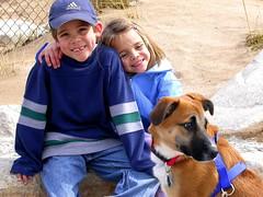 Crianças e cachorros tem algumas semelhanças