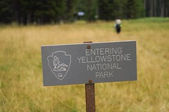 Entering Yellowstone National Park