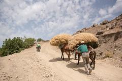 Day hike to Jebel el-Kelaa