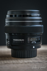 "Yongnuo 100mm F2N • <a style=""font-size:0.8em;"" href=""http://www.flickr.com/photos/58574596@N06/40988981181/"" target=""_blank"">View on Flickr</a>"