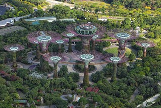 Gardens By The Bay, From the top of  Marina Bay Hotel, Singapore