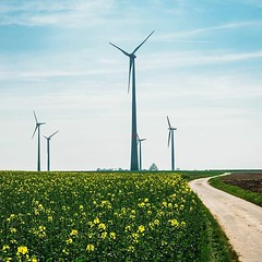 Day 738 - This was our view most of the time in southern Germany - mustard fields, wind turbines, and country roads. Yesterday Sav and I crossed into Belgium. I loved Germany, but it feels great to enter a new country. The small changes add new wonders to