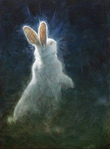 "Another White Rabbit • <a style=""font-size:0.8em;"" href=""http://www.flickr.com/photos/15706268@N04/40773390202/"" target=""_blank"">View on Flickr</a>"