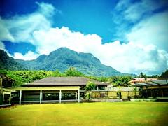 Kuching, Sarawak https://goo.gl/maps/oxoHbU6ZxAF2  #travel #holiday #Asian #Malaysia #Sarawak #Kuching #travelMalaysia #holidayMalaysia #旅行 #度假 #亚洲 #马来西亚 #沙拉越 #古晋 #trip #马来西亚旅行 #traveling #马来西亚度假 #mountain #damai #tree 树木 #bluesky #蓝天 #grass #山 #草