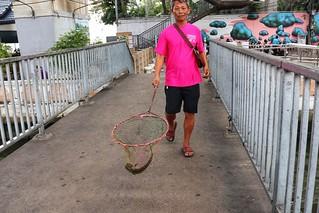 Fresh from the river, Bangkok
