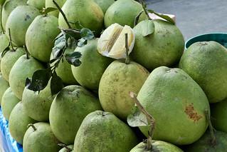 Giant grapefruit