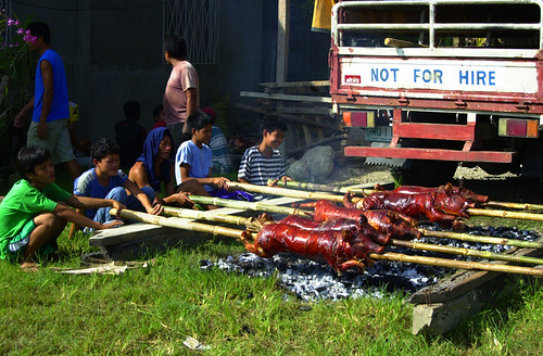 Philippines, boy, lechon, traditional lechon Pinoy,Filipino,Pilipino Buhay,Life,people,pictures,photos pig city rural