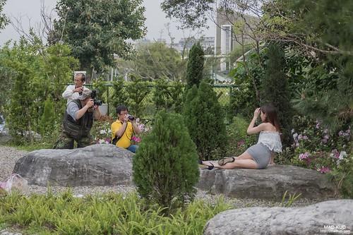 那天在花博鄧麗君紀念館拍老人家們唱歌,而十公尺外則是外拍團在拍妹子,手上拿一樣的東西,拍的卻是兩樣情,這就是人蔘阿。
