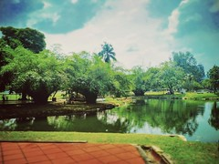 Titiwangsa, 53200 Kuala Lumpur, Federal Territory of Kuala Lumpur https://goo.gl/maps/DxvmmMX96uu  #tree #garden #travel #holiday #trip #Asian #Malaysia #KualaLumpur #travelMalaysia #holidayMalaysia #旅行 #度假 #亚洲 #马来西亚 #吉隆坡 #马来西亚旅行 #马来西亚度假 #traveling #公园 #树
