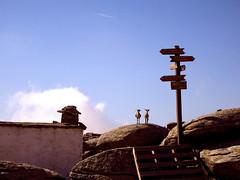 Ikaria 305 (isl_gr (away on an odyssey)) Tags: architecture hiking beautyconcealed ikaria icaria  aegean trails ridge signage trailmarker balisage ege hikingikaria   atheras  mountainrefuge ammoudia goatlands