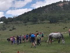 Marcha Senderismo Explorando La Sierra De Albarracín fotografia Maria  de la Puente (44)