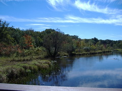 Kalamazoo river from the Nature Center bridge by cathie