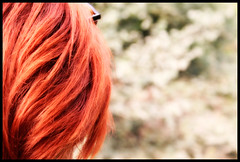 Red Hair in my Green Land