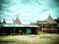 Serikin, 94000 Bau, Sarawak https://goo.gl/maps/XotnCWS41H72  #travel #holiday #Asian #Malaysia #Sarawak #Kuching #travelMalaysia #holidayMalaysia #旅行 #度假 #亚洲 #马来西亚 #沙拉越 #古晋 #trip #马来西亚旅行 #traveling #bau #石隆门 #Serikin #马来西亚度假 #rustic #乡村 #kampung