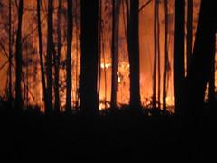 Incendios Galicia Verano 2006(Pontecaldelas). Hecha por PabloKdc