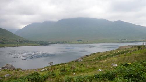 Vacances en Irlande, entre Wesport et Cashel, dans le Connemara