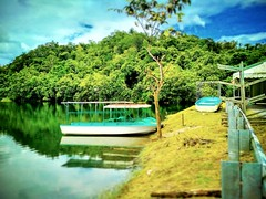 Bau, Sarawak https://goo.gl/maps/ja8J9PY3otq  #travel #holiday #Asian #Malaysia #Sarawak #Kuching #travelMalaysia #holidayMalaysia #旅行 #度假 #亚洲 #马来西亚 #沙拉越 #古晋 #trip #马来西亚旅行 #traveling #马来西亚度假  #Lake #tree #grass #湖 #boat #船