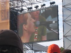New Pornographers @ ACL
