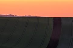 Fields of South Moravia 3