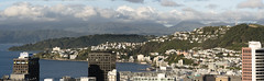 Another visual slice of the Wellington scenic cake ...