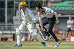 070fotograaf_20180722_Cricket HBS 1 - VRA 1_FVDL_Cricket_5110.jpg