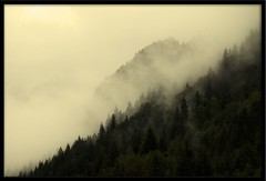 Early morning mountain mist