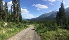 Great Divide Trail nach dem Elk Pass