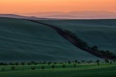 Fields of South Moravia 4