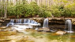 Mash Fork Falls