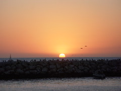 Autumnal Equinox in Marina Del Rey, Los Angele...