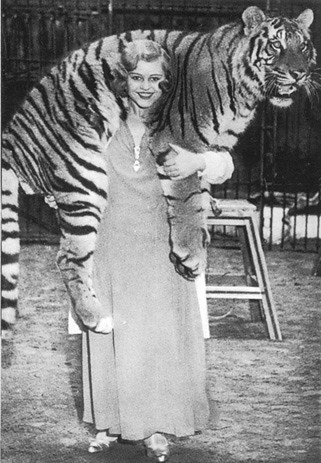 "UPDATE: Mystery solved! Miss Cilly as ""The Tiger Bride"" with tiger ""Emir"", Circus Krone 1930s. Real name: Christa Hetterich from Dinslaken"