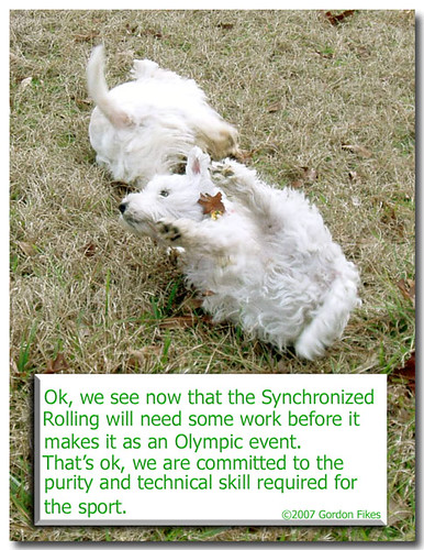 Synchronized Rolling as Olympic Sport?