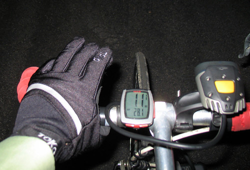 Toko Profi XC gloves