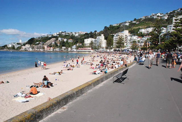 Oriental Bay Wellington New Zealand