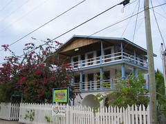 Belize home, the reef house that was our reef home
