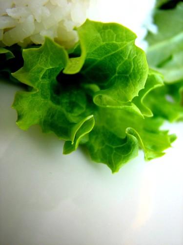 Lettuce Curls