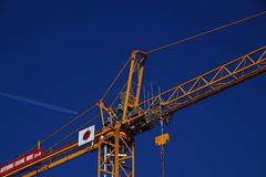 Ladybird Crane