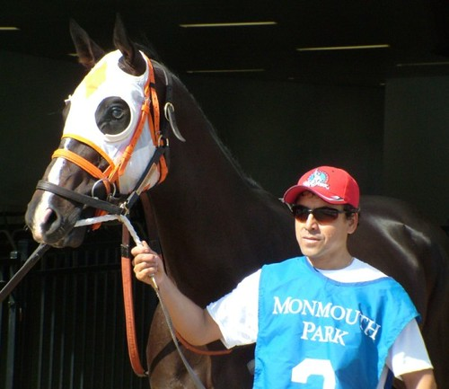 Frisky Spider before the Mr Prospector Stakes