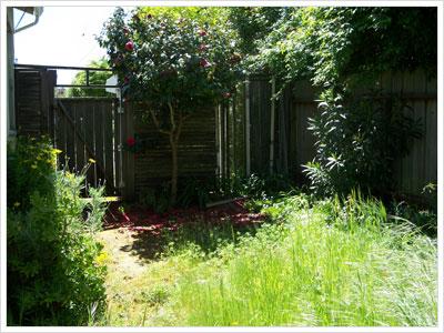 Backyard Fence and Gate