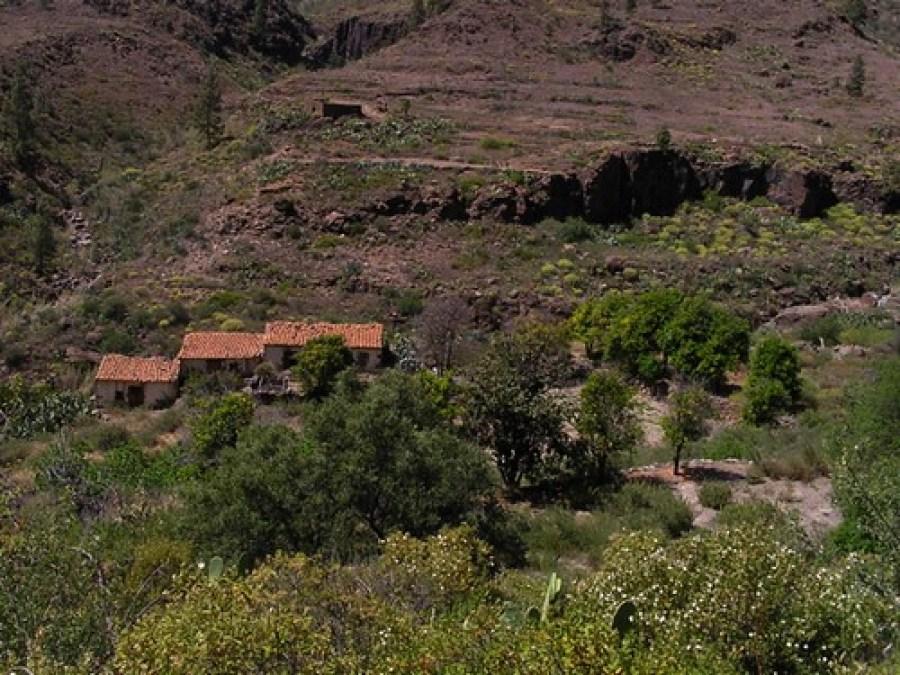 Las Tederas Isla de Gran Canaria 20