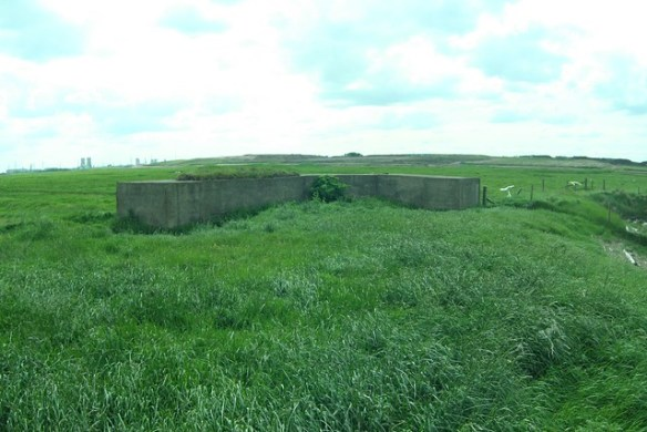 Greatham Creek Section Post