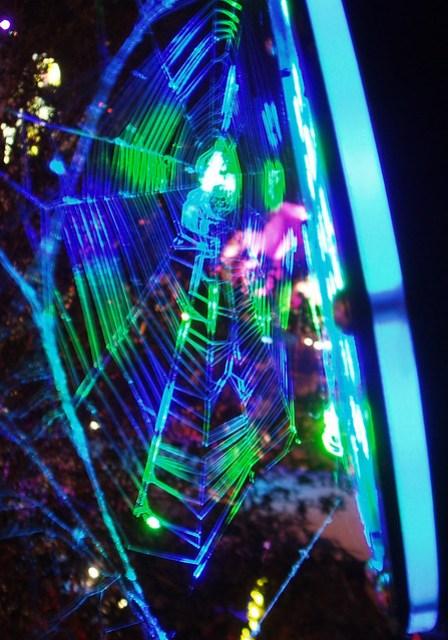 Web & LED par