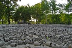 Global warming, dry land...